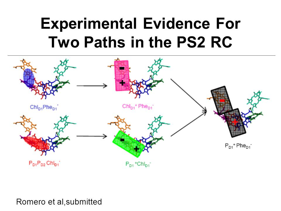 Experimental Evidence For Two Paths in the PS2 RC