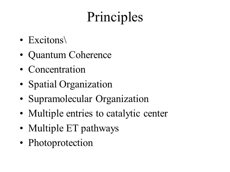 Principles Excitons\ Quantum Coherence Concentration