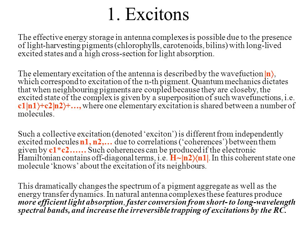 1. Excitons