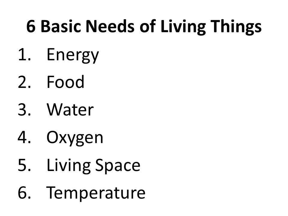 6 Basic Needs of Living Things