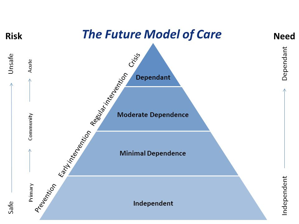 The Future Model of Care
