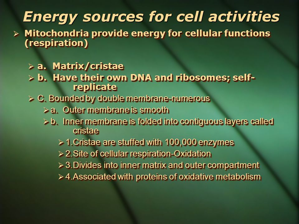 Energy sources for cell activities