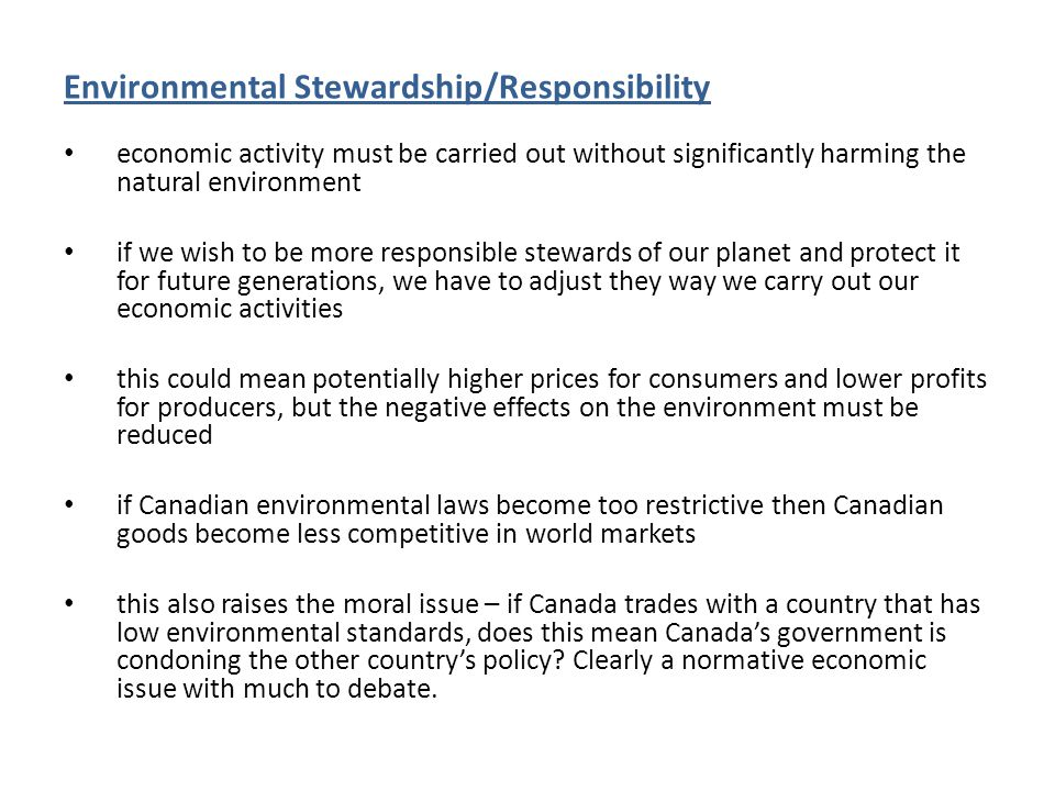 Environmental Stewardship/Responsibility