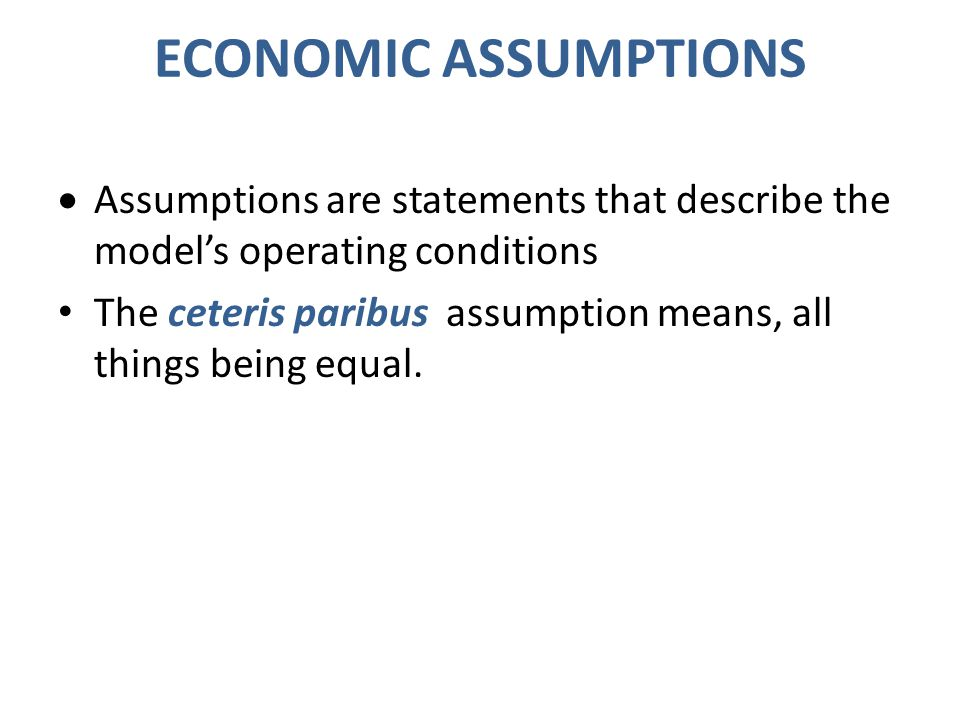 ECONOMIC ASSUMPTIONS Assumptions are statements that describe the model's operating conditions.