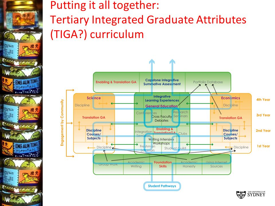 Putting it all together: Tertiary Integrated Graduate Attributes (TIGA