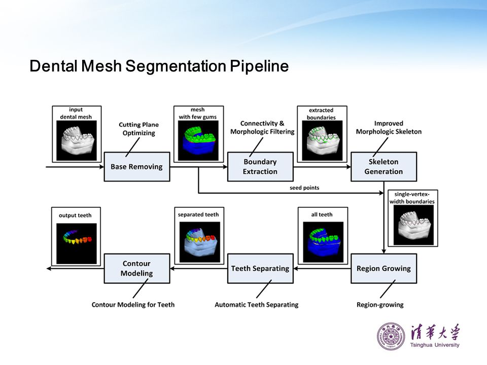 Dental Mesh Segmentation Pipeline