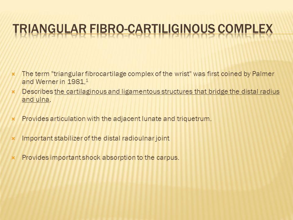 Triangular fibro-cartiliginous complex