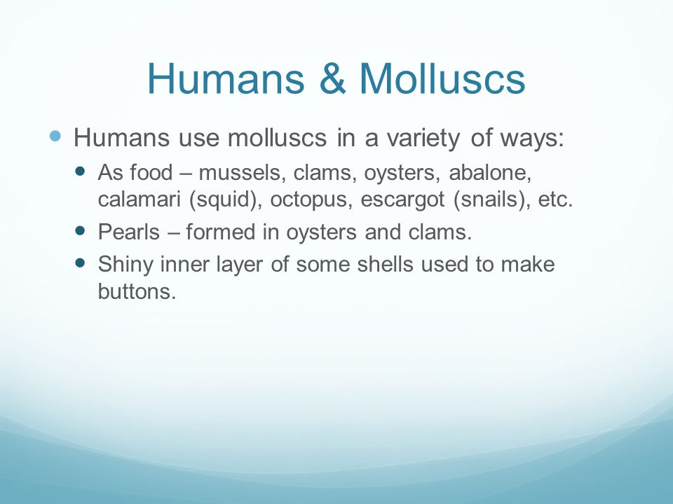 Humans & Molluscs Humans use molluscs in a variety of ways: