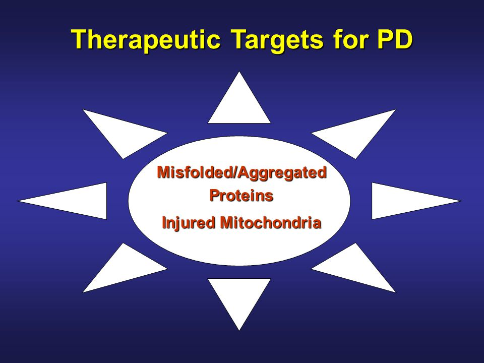 Therapeutic Targets for PD Misfolded/Aggregated