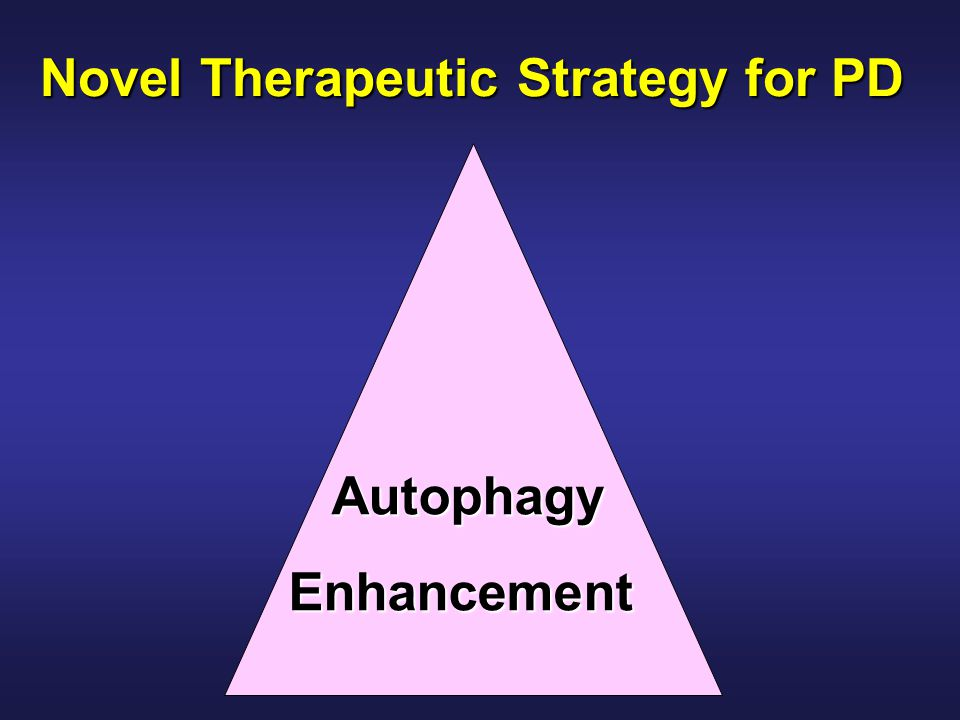Novel Therapeutic Strategy for PD