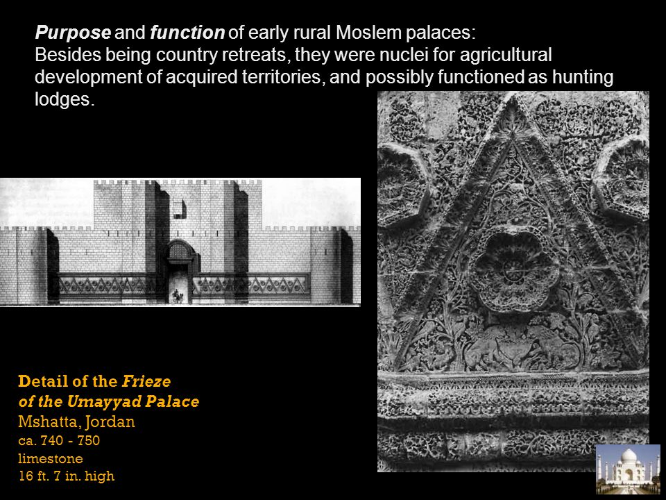 Purpose and function of early rural Moslem palaces: