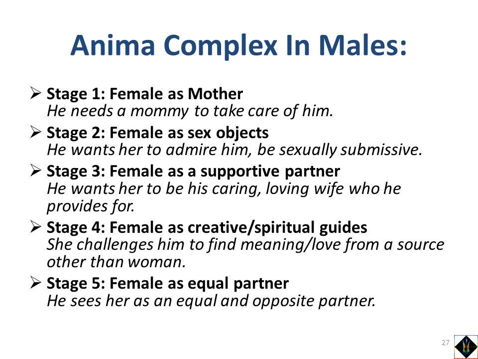Anima Complex In Males: