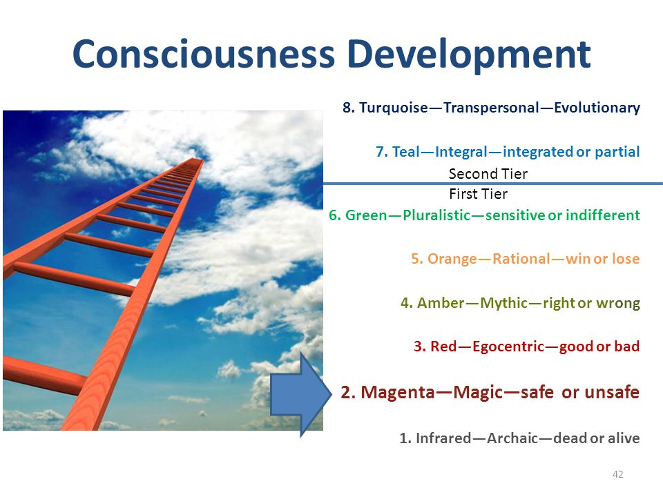 Consciousness Development