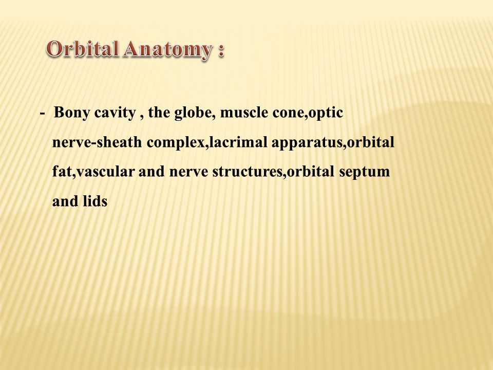 Orbital Anatomy : - Bony cavity , the globe, muscle cone,optic
