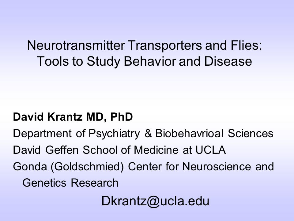 Neurotransmitter Transporters and Flies: Tools to Study Behavior and Disease