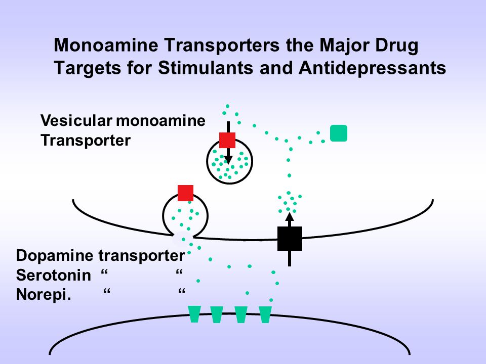 Monoamine Transporters the Major Drug Targets for Stimulants and Antidepressants