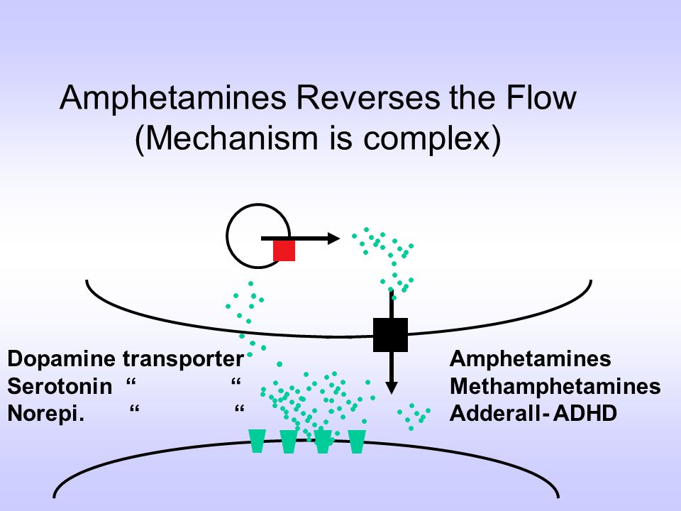 Amphetamines Reverses the Flow (Mechanism is complex)