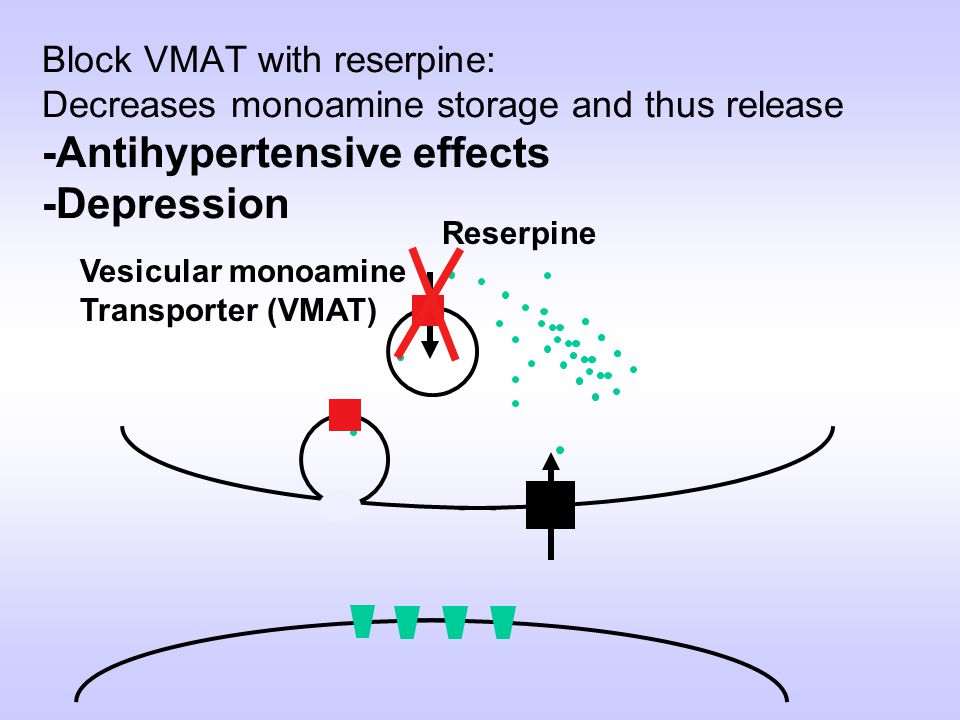 Block VMAT with reserpine: Decreases monoamine storage and thus release -Antihypertensive effects -Depression