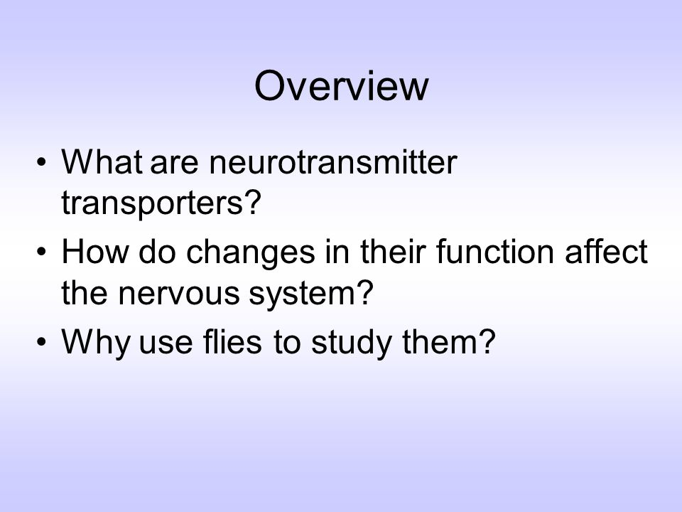Overview What are neurotransmitter transporters