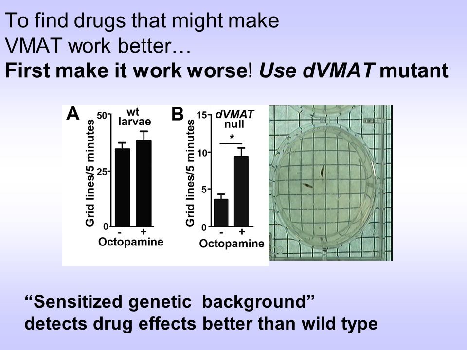 To find drugs that might make VMAT work better… First make it work worse! Use dVMAT mutant