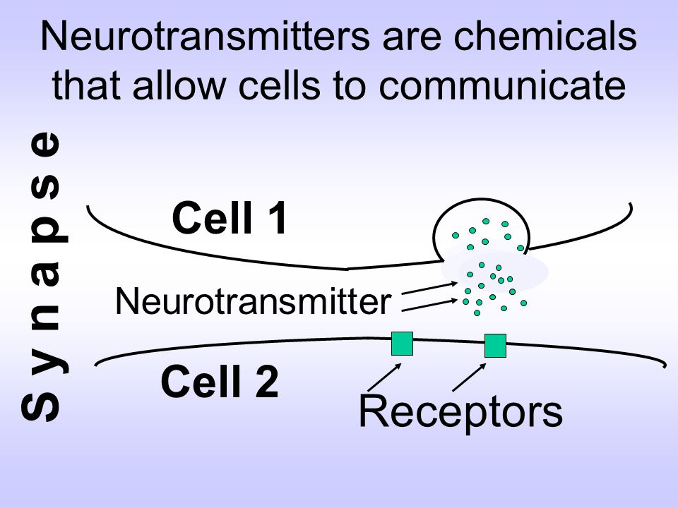 Neurotransmitters are chemicals that allow cells to communicate