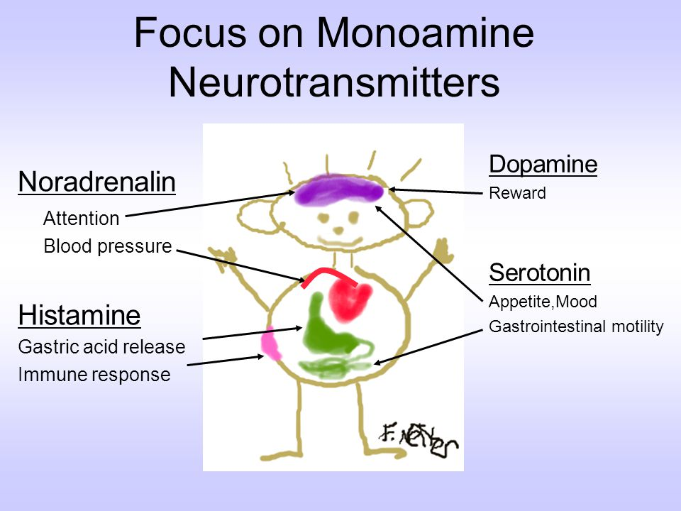 Focus on Monoamine Neurotransmitters