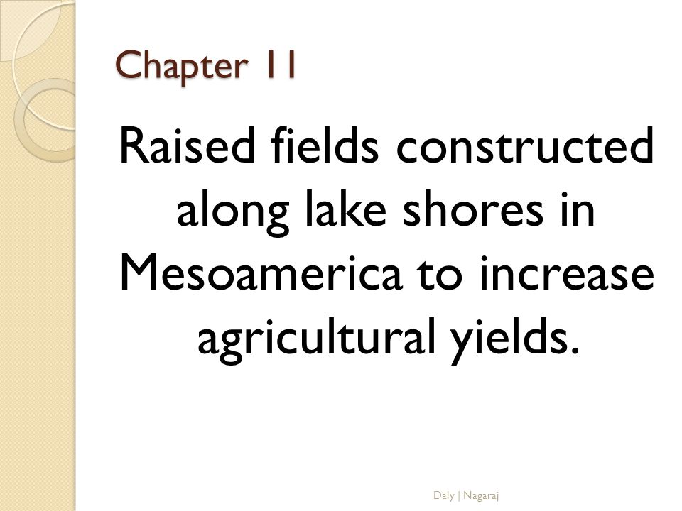 Chapter 11 Raised fields constructed along lake shores in Mesoamerica to increase agricultural yields.