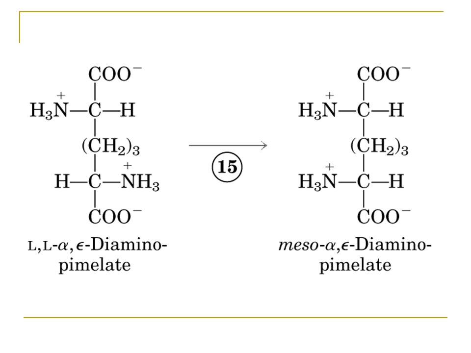 Figure 22-15-15