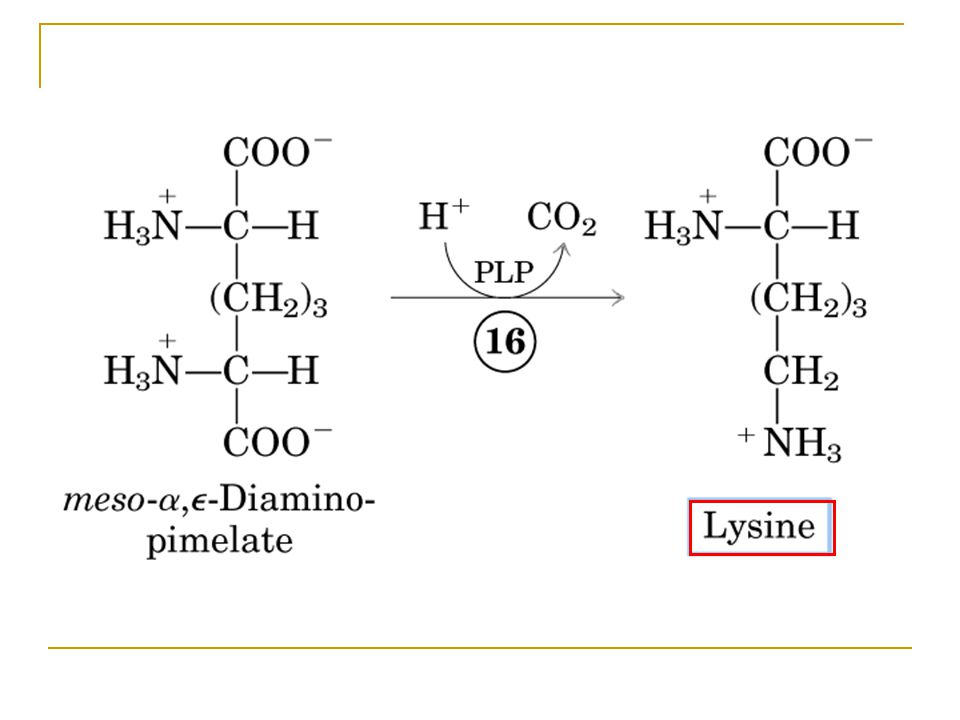 Figure 22-15-16