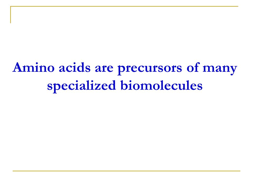 Amino acids are precursors of many specialized biomolecules
