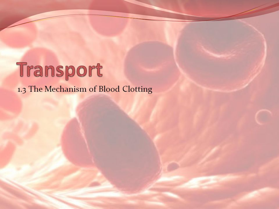 Transport 1.3 The Mechanism of Blood Clotting