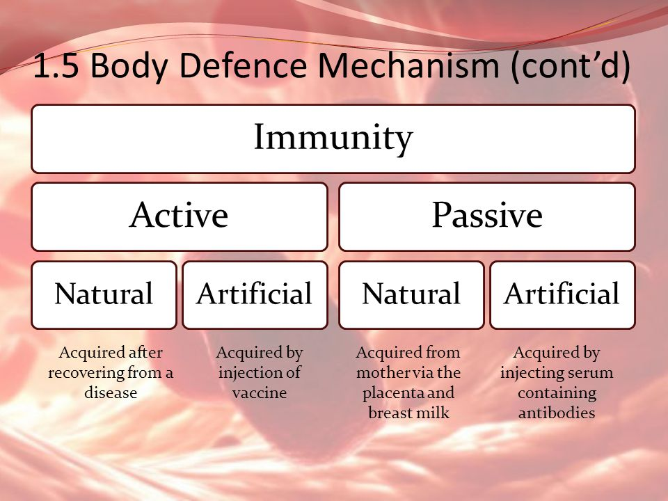 1.5 Body Defence Mechanism (cont'd)
