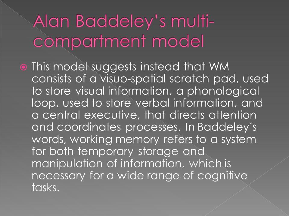Alan Baddeley's multi-compartment model