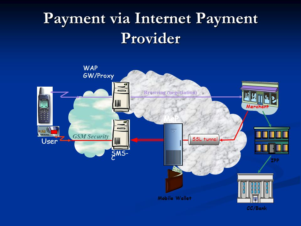Payment via Internet Payment Provider