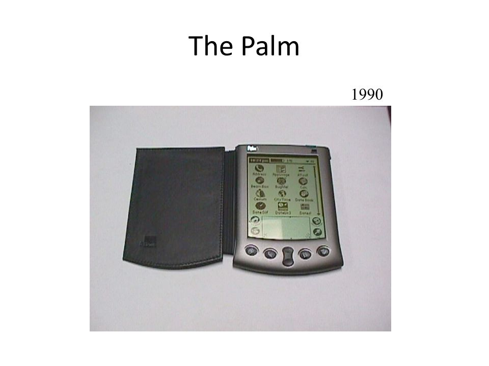 The Palm 1990