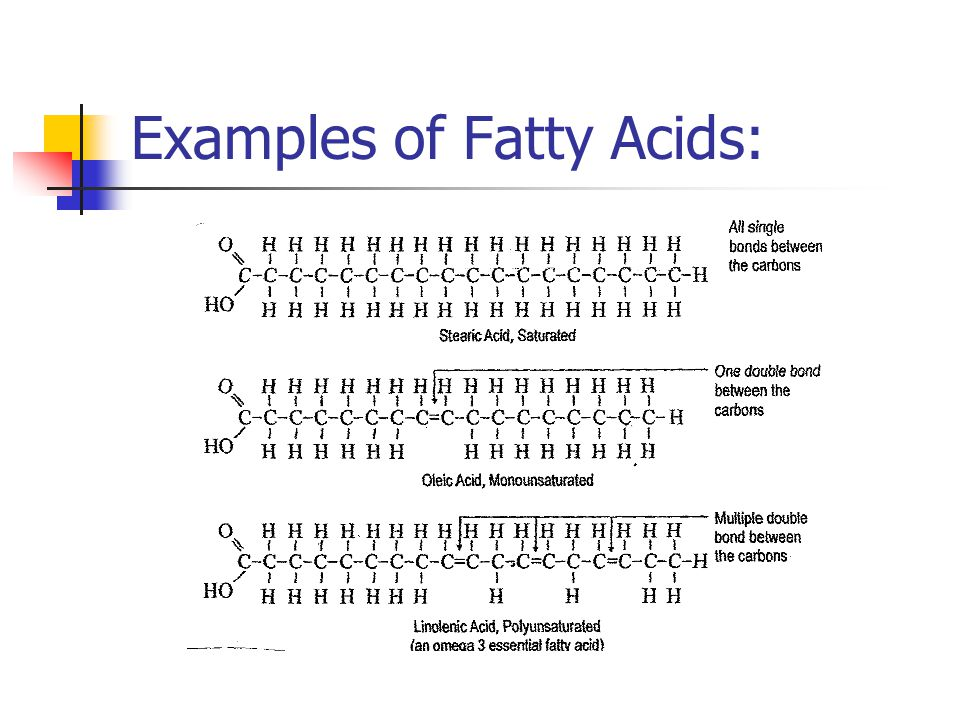 Examples of Fatty Acids: