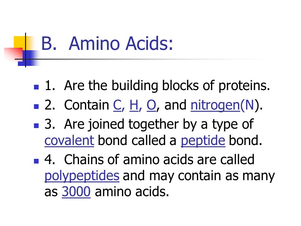 B. Amino Acids: 1. Are the building blocks of proteins.