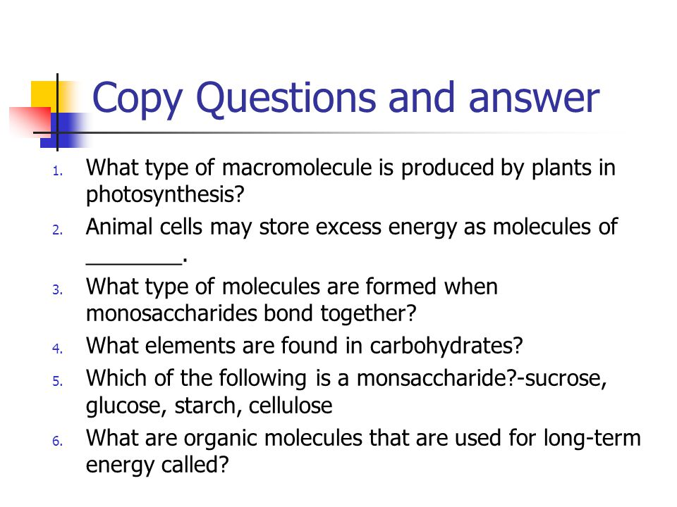 Copy Questions and answer