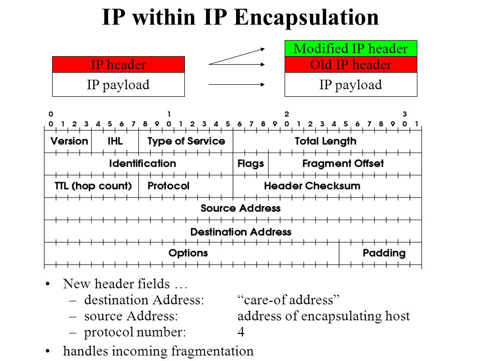 IP within IP Encapsulation
