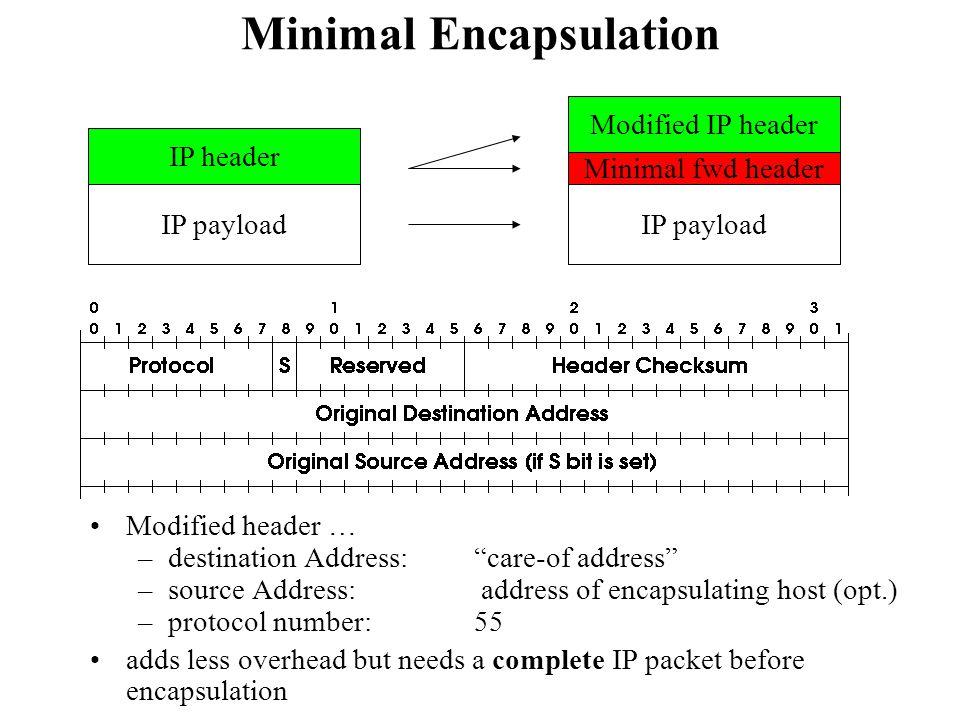 Minimal Encapsulation