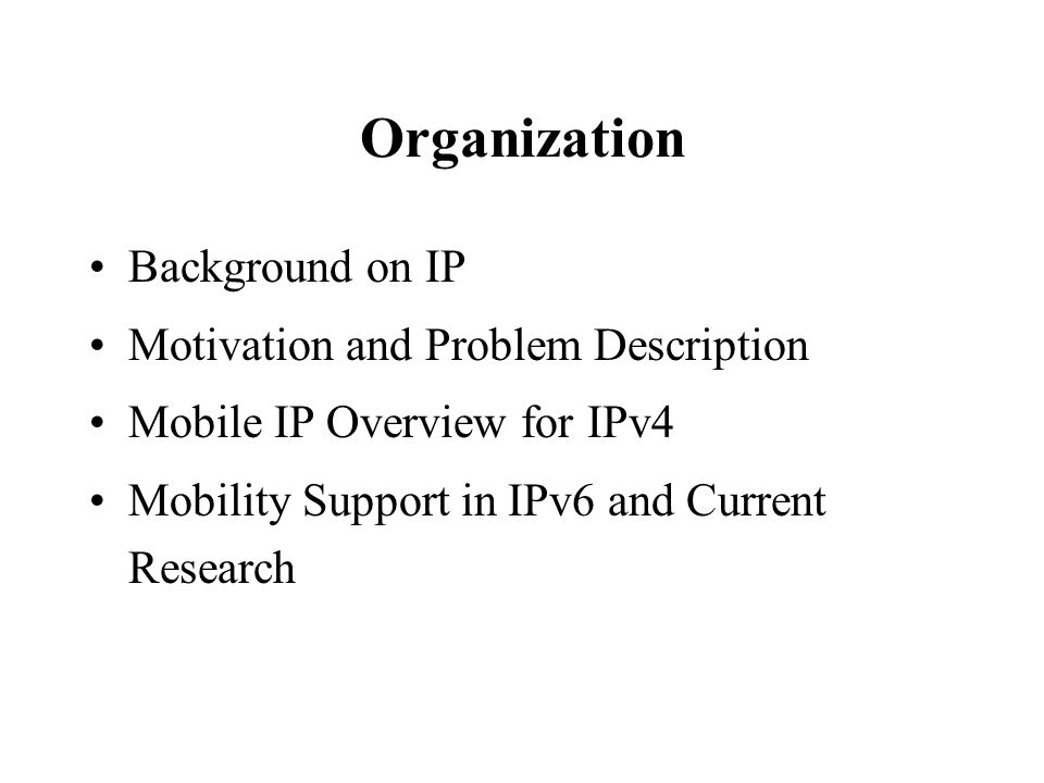 Organization Background on IP Motivation and Problem Description