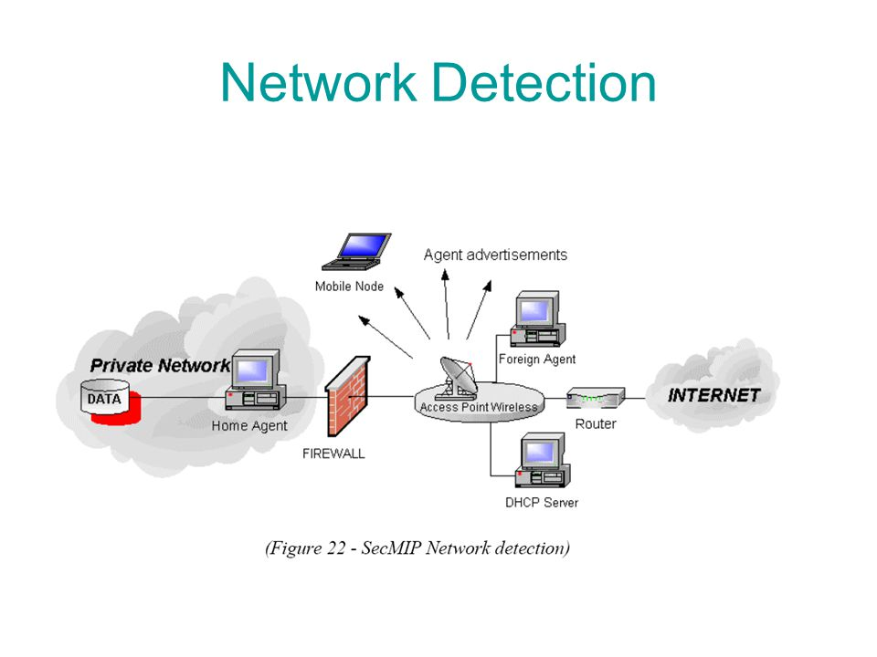 Network Detection