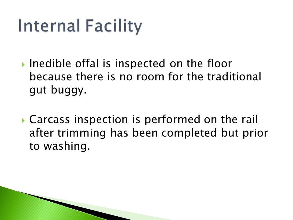 Internal Facility Inedible offal is inspected on the floor because there is no room for the traditional gut buggy.