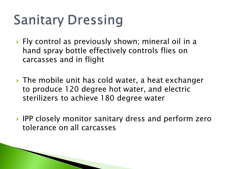 Sanitary Dressing Fly control as previously shown; mineral oil in a hand spray bottle effectively controls flies on carcasses and in flight.