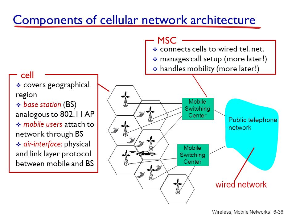 Components of cellular network architecture
