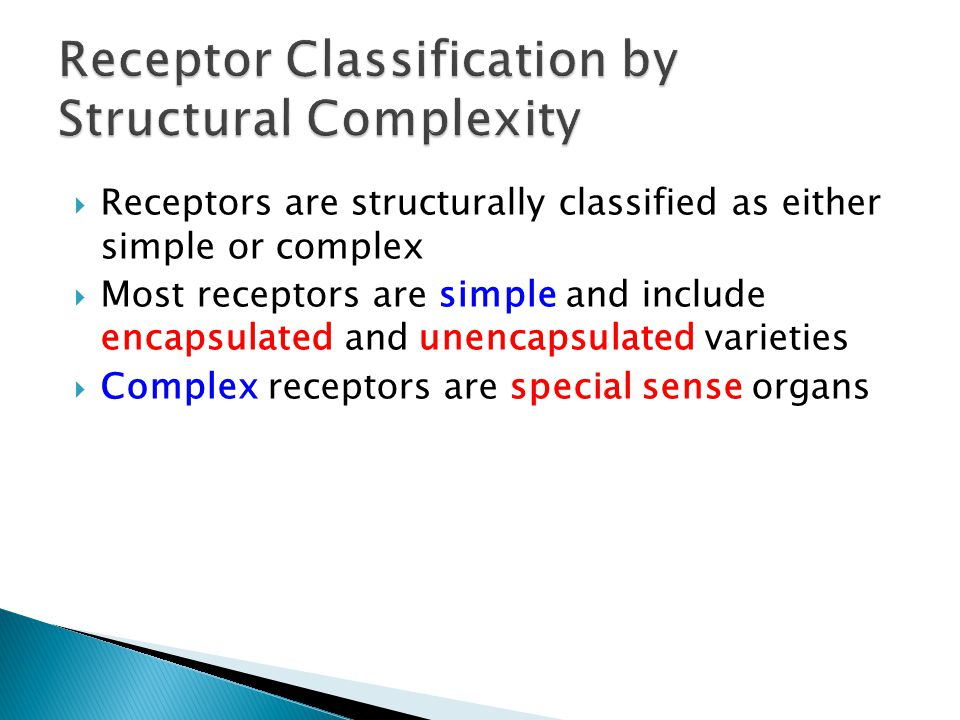 Receptor Classification by Structural Complexity