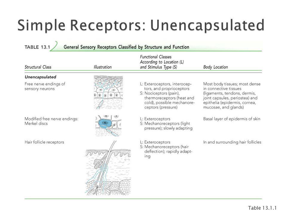 Simple Receptors: Unencapsulated