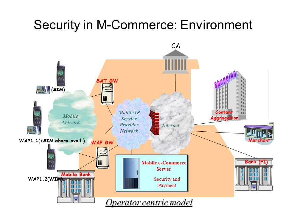 Security in M-Commerce: Environment