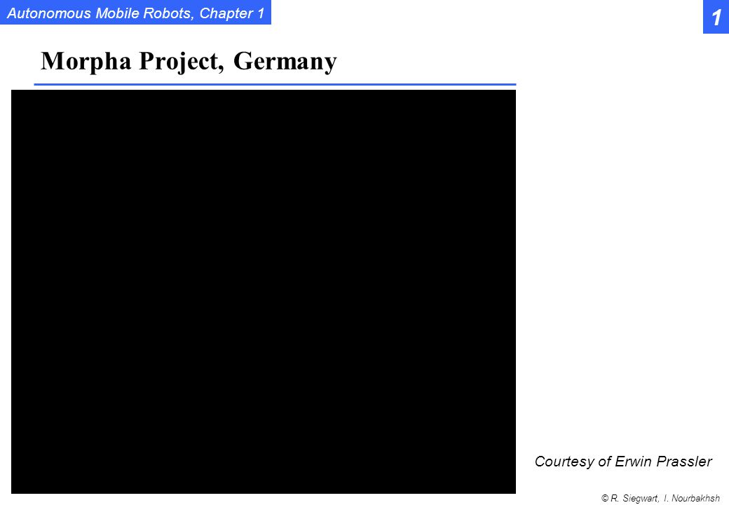 Morpha Project, Germany
