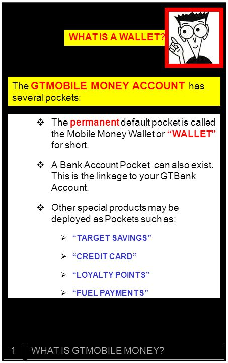 The GTMOBILE MONEY ACCOUNT has several pockets: